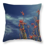 Like Flying Amongst The Clouds Throw Pillow
