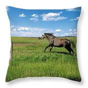 Like The Wind 2 Throw Pillow