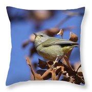 Lil' Bit - Orange-crowned Warbler Throw Pillow