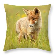 Lil' Hunter - Red Fox Cub Throw Pillow