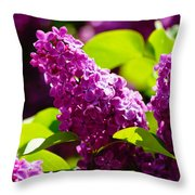 Lilac Bloom Throw Pillow