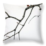 Lilac Branches Throw Pillow