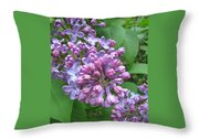 Lilac Buds And Blossoms Throw Pillow
