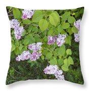 Lilac Bush Throw Pillow