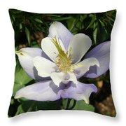 Lilac Columbine Throw Pillow