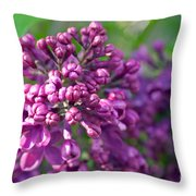 Lilac Dizzy Throw Pillow