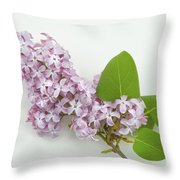 Lilac Flowers - White Background Throw Pillow