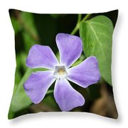 Lilac Periwinkle Throw Pillow