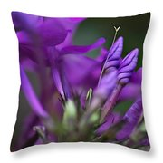 Lilac Petals And Purple Buds Throw Pillow
