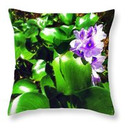 Lilac Pink Beauty Throw Pillow