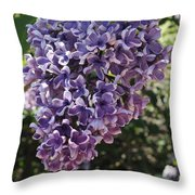 Lilac Beauty Throw Pillow