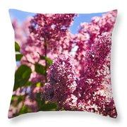 Lilacs Throw Pillow by Elena Elisseeva
