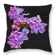 Lilacs - Perfumed Dreams Throw Pillow