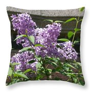 Lilacs Up Against The Wall Throw Pillow