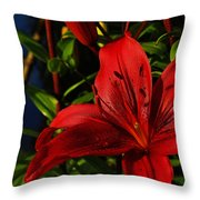 Lilies By The Water Throw Pillow by Randy Hall