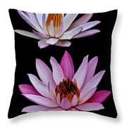 Lilies In Black Throw Pillow