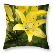 Lilies In The Sun Throw Pillow