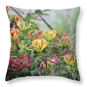 Lilies Of Color Throw Pillow