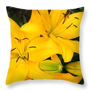 Lillies In Yellow Throw Pillow