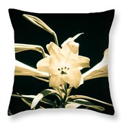 Lilly And Light Throw Pillow