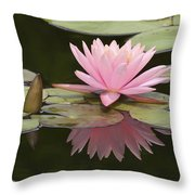 Lilly And Reflective Beauty Throw Pillow