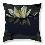Lilly Of The Morning Throw Pillow