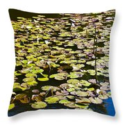 Lilly Pads Throw Pillow