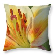 Lilly White 2 Throw Pillow
