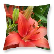 Lillys And Buds 1 Throw Pillow