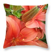 Lillys And Buds 3 Throw Pillow
