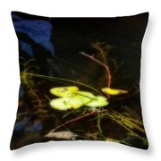Lilly's Pad Throw Pillow