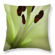 Lily 2am-114582 Throw Pillow