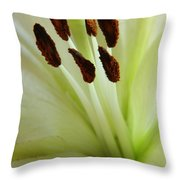 Lily 2am-114584 Throw Pillow