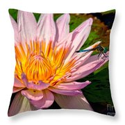 Lily And Dragon Fly Throw Pillow by Nick Zelinsky