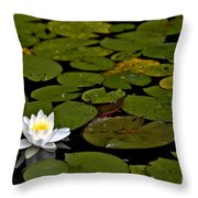 Lily And Pads Throw Pillow
