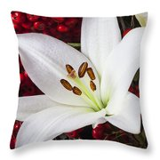 lily and Pyracantha Throw Pillow by Garry Gay