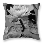 Lily Bw Throw Pillow