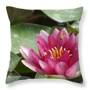Lily Darling Throw Pillow