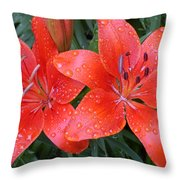 Lily Duet After The Rain Throw Pillow