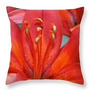 Lily Eyes Throw Pillow