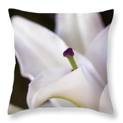 Lily Fair Throw Pillow