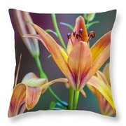 Lily From The Garden Throw Pillow