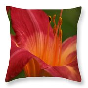 Lily In The Morning Throw Pillow