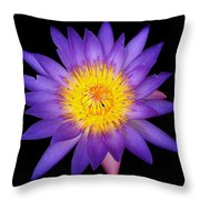 Lily In The Void Throw Pillow