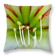 Lily -lilium Throw Pillow