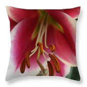 Lily Macro Throw Pillow