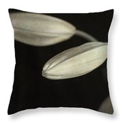 Lily Mystery Throw Pillow