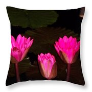 Lily Night Time Throw Pillow