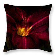 Lily Number Nine Throw Pillow by Bob Orsillo