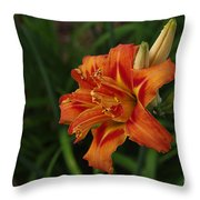 Lily Of Lilies  Throw Pillow